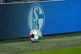 Dynamos Auswärtsspiel auf Schalke live im Fernsehen