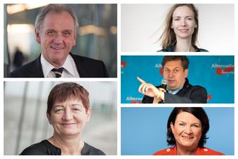 Fünf Sachsen im EU-Parlament
