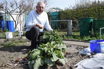 Gärtnern verschönert das Leben