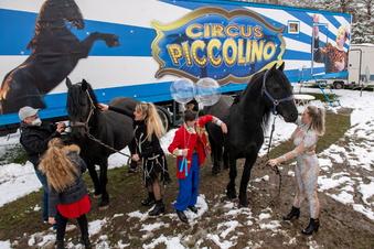 Viel Beistand für Zirkusse in der Corona-Zeit
