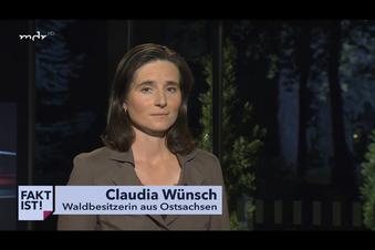 Forstbesitzerin contra Waldprofessor