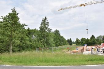 Das verwilderte Baugebiet in Klingenberg