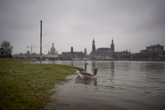 So lässt sich Hochwasser früher stoppen