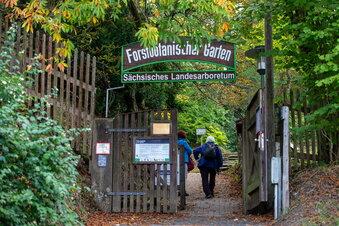 Forstgarten in Tharandt ist ab Montag offen