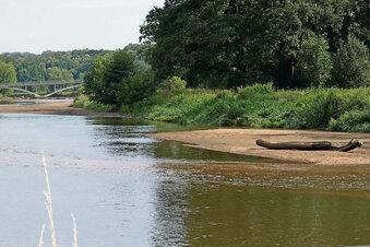 Starkregen sorgt für höhere Flusspegel