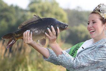 Angler stocken Fischbestand auf