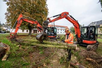Arbeiten an Westewitzer Parkanlage haben begonnen