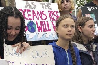 Greta streikt vor dem Weißen Haus