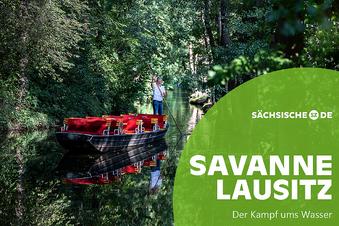 Wassermangel im Spreewald: Der Grund kommt näher