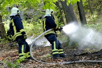 Besondere Waldbrandgefahr in Meißen