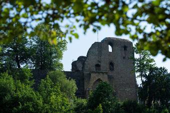 Sachsens schöne Ruinen
