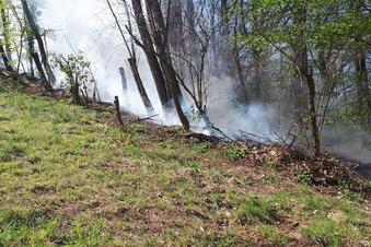 Waldbrand in Meißen