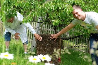 """""""Man muss sich um seine Bienen kümmern"""""""