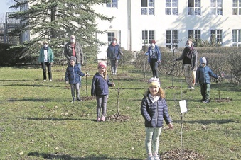 Naschbäume für die Kita Ulja