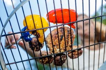 Mehr Tierwohl wird Fleisch teurer machen