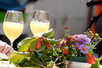 Meißner Weinfest mit Spagat