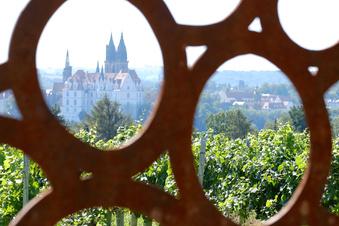 La marca de vino de Sajonia necesita protección contra los piratas