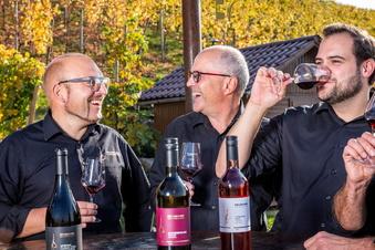 Fellbacher Weingärtner in Meißen zu Gast