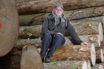 Dutzende Bäume im Seifersdorfer Tal gefällt