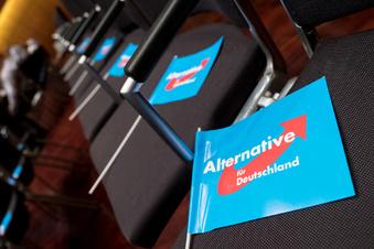 Teilerfolg für sächsische AfD im Listenstreit