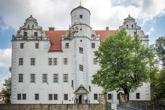 Die Geheimnisse vom Schloss Schönfeld