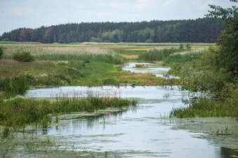 Flusspegel sinken schon wieder im Kreis Görlitz