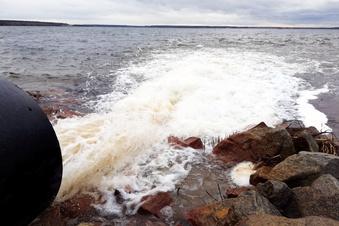 Elbe-Wasser für das Lausitzer Seenland?