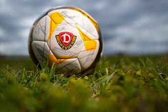 Dynamo startet am 17. Mai in Hannover