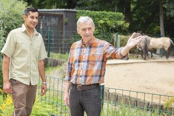 Generationswechsel im Tierpark