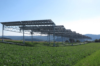Glashütte: Stadtrat lehnt Agri-Fotovoltaik-Anlage ab