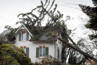Versicherung zahlt bei Sturmschäden