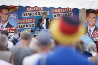AfD will mit Corona-Thema Wähler locken