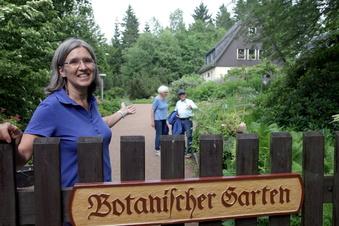 Gewachsen in Schellerhau