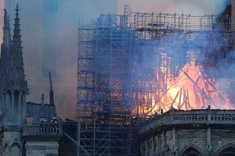 Wiederaufbau von Notre Dame kann beginnen