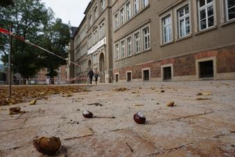 Schönere Hofpausen an Triebischtalschule