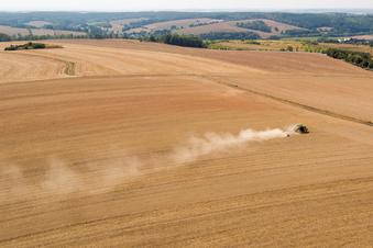 Sächsische Forscher enträtseln Dürre-Phänomen
