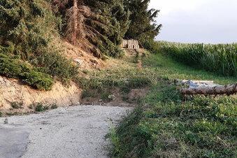 Hindernistour auf dem Radweg