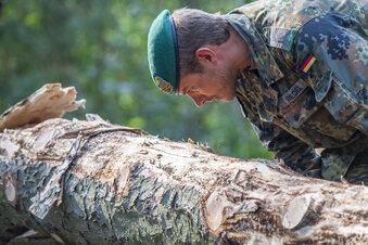 Bundeswehr kämpft gegen Borkenkäfer