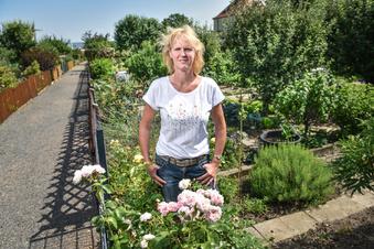 Dresdens neuer schönster Kleingarten ist ...