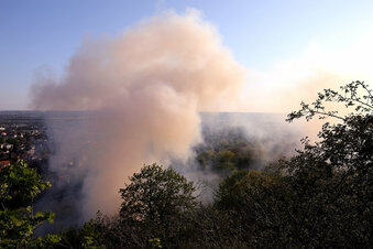 Wald brennt in Radebeul
