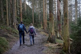 Sächsische Schweiz: Kampf um Wanderwege