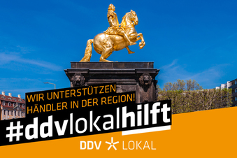 Dresden: Diese Dienstleister sind für Sie da