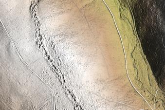 Die Geschichte des Erzgebirgswalds