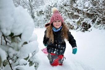 Das Elbland versinkt im Schnee