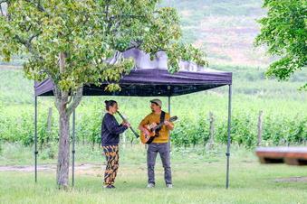 Musik in den Weinbergen und Sommerkino