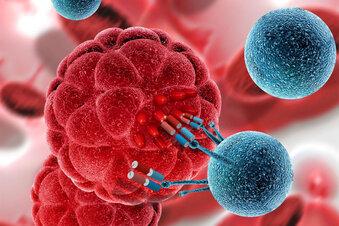 Diese Krebs-Spezialisten erklären Therapien