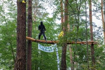 Waldbesetzer wollen Runden Tisch