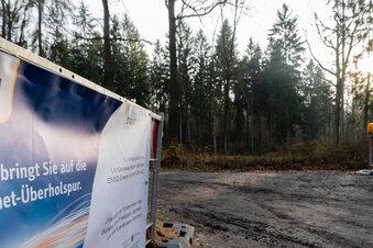 Warum Glasfaserkabel im Wald verlegt werden