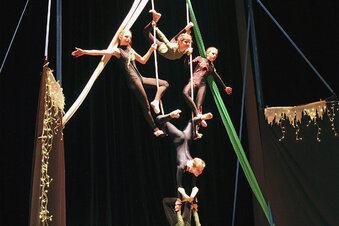 Zirkuskunst auf hohem Niveau