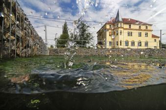 Hochwasserschutz für Dresdner Nordosten